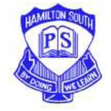 Hamilton South Public School - Perth Private Schools