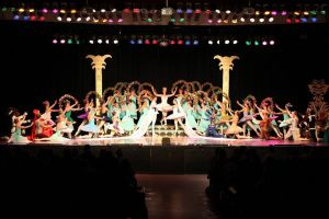Newcastle Dance Academy - Perth Private Schools